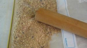 Biscuit Crumbs