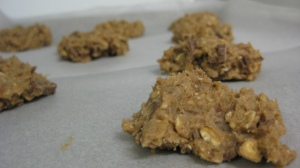Uncooked Oat and Chococlate Cookies