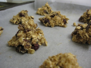 Unbaked Oat Date and Cranberry Cookies
