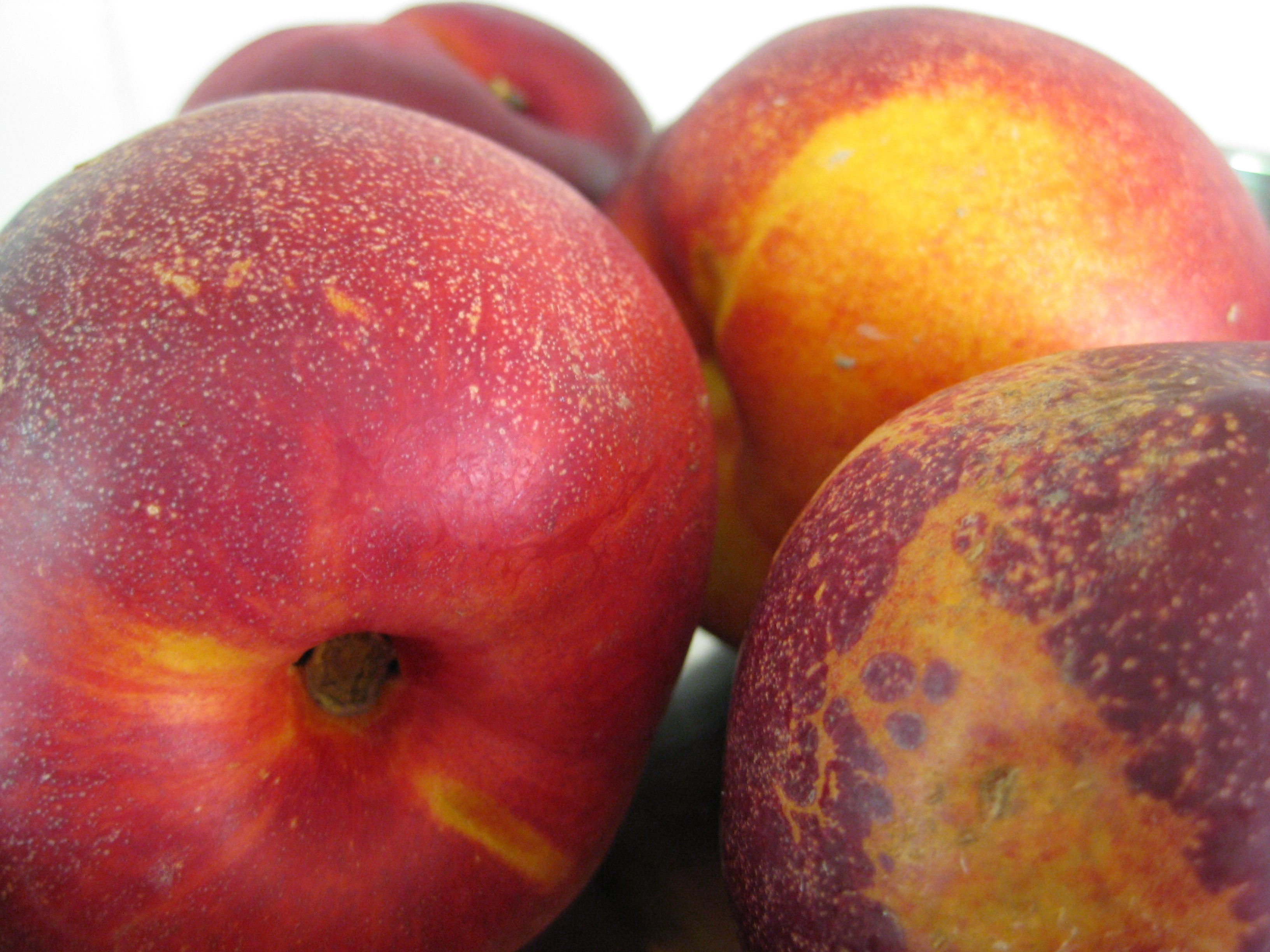 Nectarine Jam – Preserve The Taste of Summer | To Serve, With Love